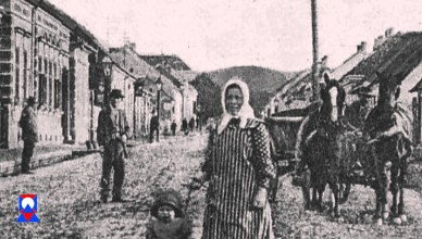 Stara Podravska Slatina – Video razglednica 13
